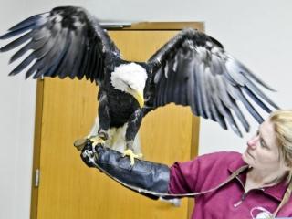 fb Miller Rm Eagle 4157
